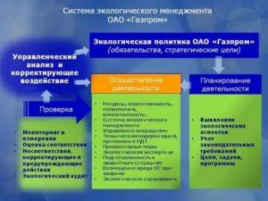 Задачи эколога на предприятии
