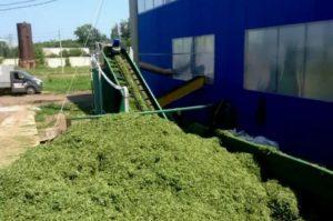 Технологии производства травяной муки