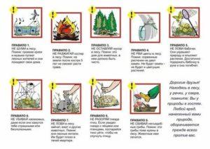 Правила поведения в походе для детей в картинках