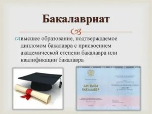 Считается ли бакалавриат высшим образованием