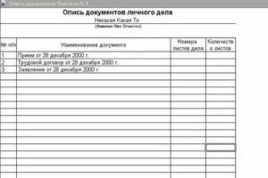 Как правильно написать опись на предоставляемые документы