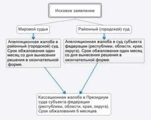 Куда обжаловать опредление областного суда