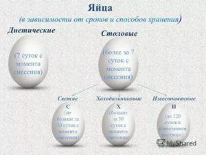 Срок хранения куриных яиц