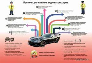 Как узнать когда будет о дтп по водительским правам