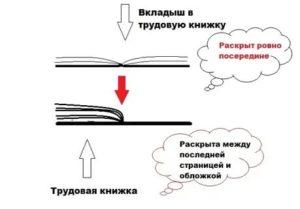 Как подшивать вкладыш в трудовую книжку образец