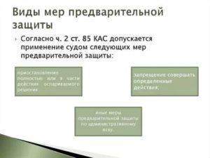 Меры предварительной защиты по административному