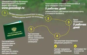 Какие документы нужны на охотничий билет